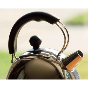 Cuisinart KUA17 Electric Steel Kettle